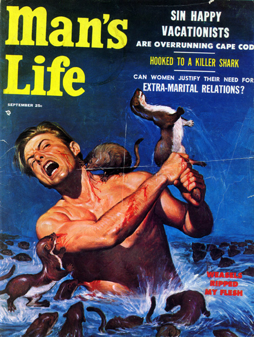 Man's Life 1956 Weasels Ripped My Flesh